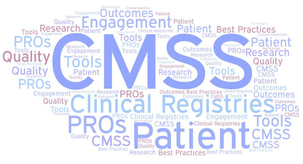 cmss word cloud